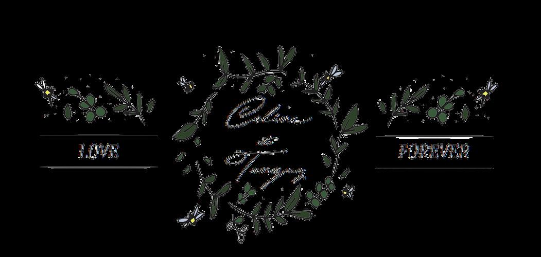 Cuty Calligraphy